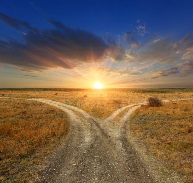 Qu'est-ce qui fait que la vie vaut la peine d'être vécue?  Les réponses de la psychologie positive.