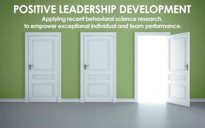 Positive Leadership Development