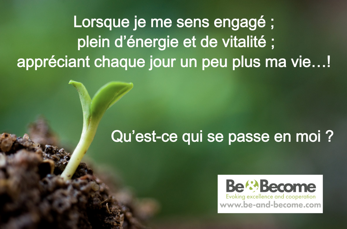 be-become-evoking-excellece-and-cooperation-4